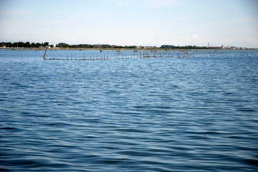 pesca a seragia