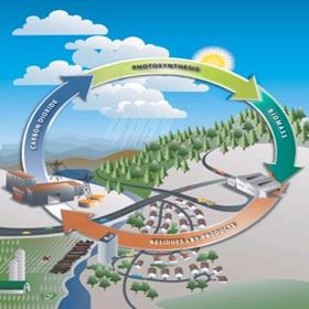 ciclo biomassa energia