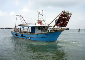 Pesca-turismo nella Laguna sud di Venezia