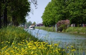 Eco tour lungo la riviera del Brenta