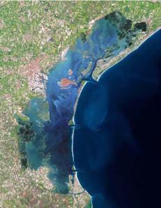 Salviamo la laguna di Venezia