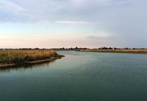 Tour ecologico in laguna di Venezia