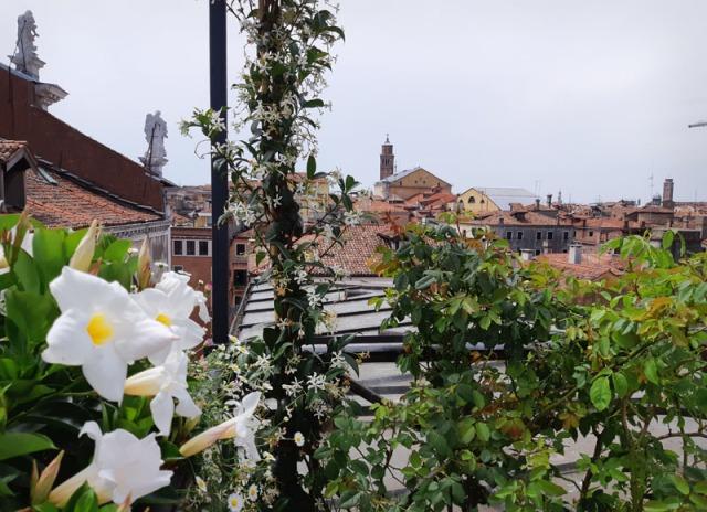 Aperitivo in terrazza a Venezia