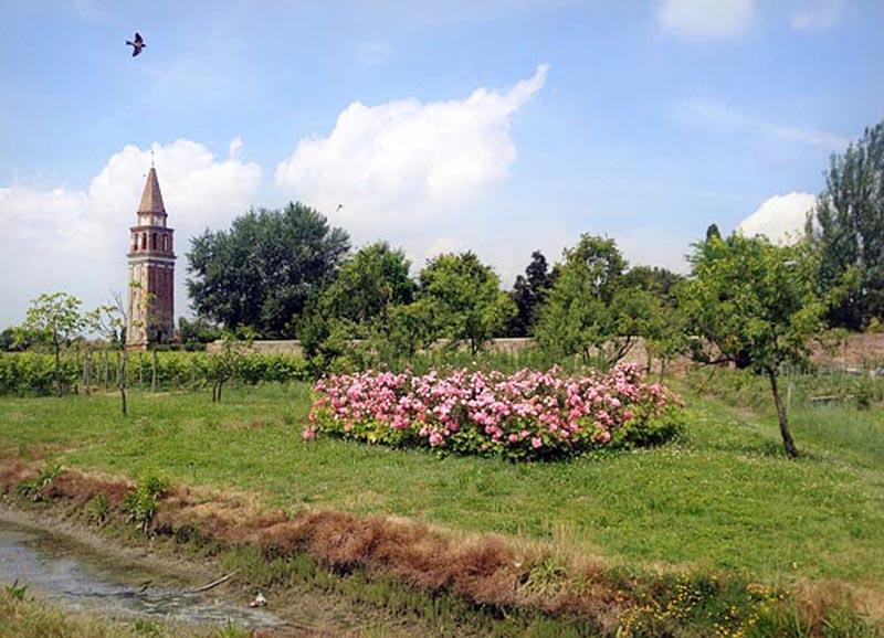 Escursione laguna venezia